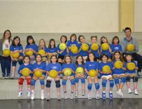 Fontana Ermes S.p.A. sponsorizza il Sala Baganza Volley 2014