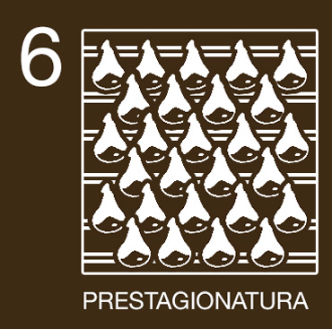 produzione prosciutto di parma prestagionatura